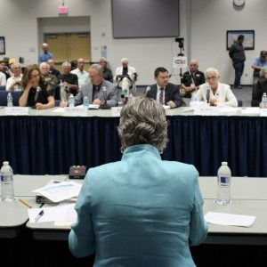 Brownley Hosts Congressional Hearing on VA's Long-Term Care Services